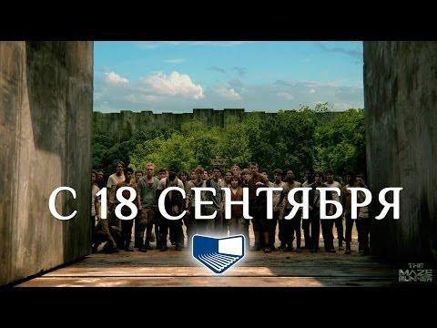10 фактов о фильме Бегущий в лабиринте