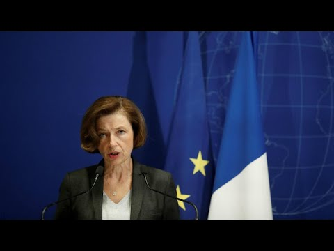 French defence minister visits Mali as France mourns soldiers killed in crash