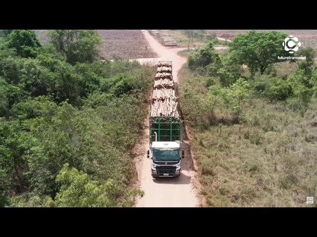 Suzano começa a operar com hexatrens no Mato Grosso do Sul