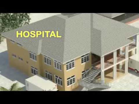 Habibi Herbal Clinic   Hospital Project
