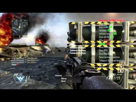 how to get bots on black ops 1 ps3