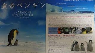 皇帝ペンギン 2005 映画チラシ 2005年7月16日公開 シェアOK お気軽に 【...