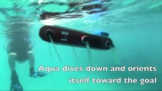 Multi-Domain Monitoring of Marine Environments using a Heterogeneous Robot Team