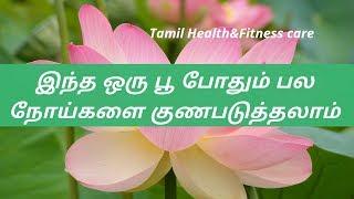 தாமரைபூ மருத்துவ பயன்கள்|thamarai poo benifits in tamil