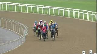 Vidéo de la course PMU PRIX GOLD CIRCLE RACING YOUTUBE MR 88 HANDICAP