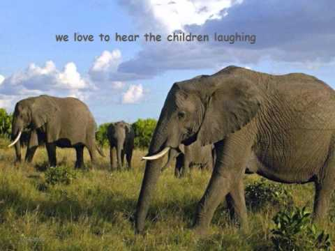 Elephantsong (Kamahl).asf
