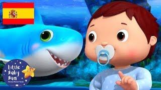 Canciones Infantiles | El Baile de Bebé Tiburón | Dibujos Animados | Little Baby Bum en Español
