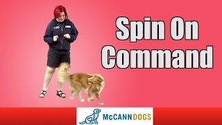 Teach Your Dog How To Spin On Command