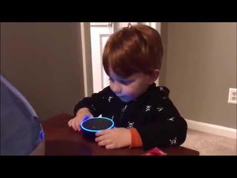 Alexa, Play Digger Digger - YouTube
