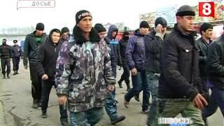 Новосибирск.НОВОСТЬ ДНЯ.Мигранты-17.08.2016