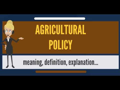 What is AGRICULTURAL POLICY? What does AGRICULTURAL POLICY mean? AGRICULTURAL POLICY meaning