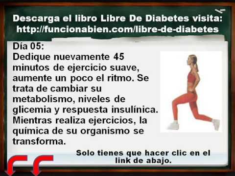 Descarga Libre De Diabetes Libro Pdf