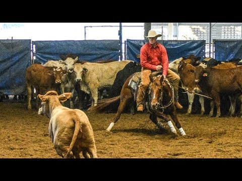 Darling Downs Futurity Show Non Pro Classic Challenge Final   Jack Johnston riding Mypops Dual Rey