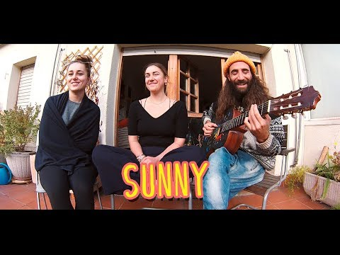 Gato, Piper, Bella - Sunny (Bobby Hebb cover)