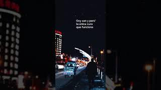 Xannax - Jason Miyagi (traducida al español) [vertical video porque sí]