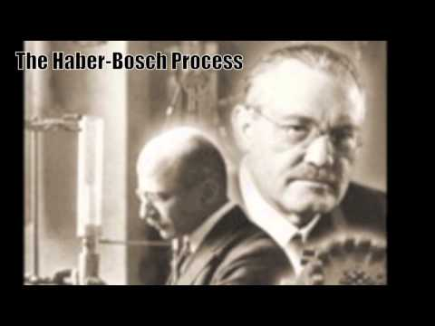 The Haber-Bosch Process: Nitrogen Fixing the World