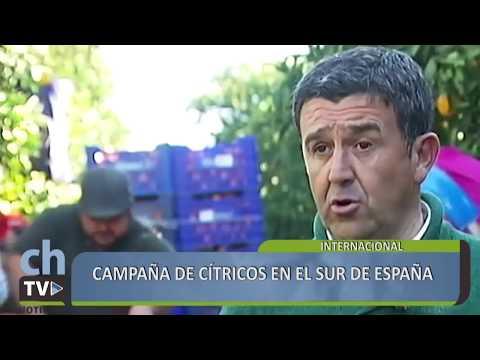 ChacraTV Noticias Internacional 01/04/18