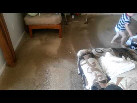 Dry Extraction Carpet Cleaning Las Vegas & Henderson Nv 0001