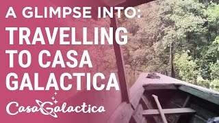 How to easily travel to the jungle with Casa Galactica!