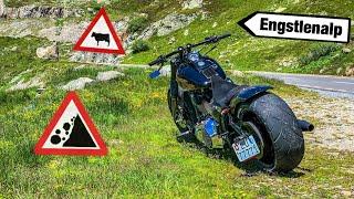 Harley-Davidson Rideout 30.06.20