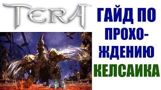 Гайд по прохождению КЕЛСАИКА - TERA Online (РЕЙД 10, Гнездо Келсаика)