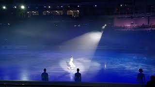 Первенство россии по фигурному катанию среди юниоров Церемония открытия Фрагменты