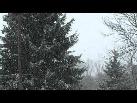 Some April Snow Mansfield Pa. 2016