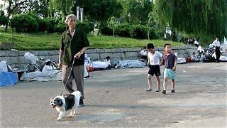 チャンネル登録のお願い・subscribe please→URL http://ur0.work/NQcZ 北朝鮮の平壌の中心には大同江が流れている。その河辺は平壌市民の憩いの場になっ...