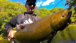 Salmon River Pulaski NY Fly Fishing 9 23 18