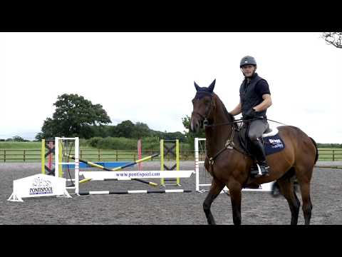 Gymnastic horse jumping exercises with Alex Bragg | Your Horse