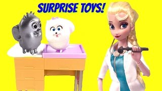 Doctor Elsa Toy Surprise Show! Secret Life of Pets, Dory, Anna Get Blind Bags!
