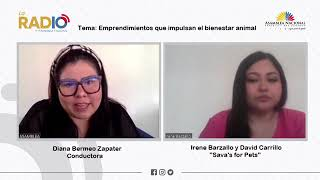 Vídeo de entrevista a Irene Barzallo y David Carrillo de Sava´s for Pets
