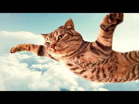 I Can Fly In Progressive Trance House Mix (Space K3 Re-Mix)