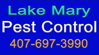 Lake Mary Pest Control   407-697-3990   Pest Control Lake Mary   Lake Mary Termite Control