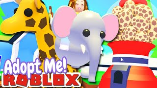🦁SAFARI PETS🦁 UPDATE! | Adopt Me Roblox NEW HERE