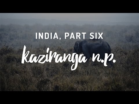 India, Part Six - Kaziranga National Park, Assam