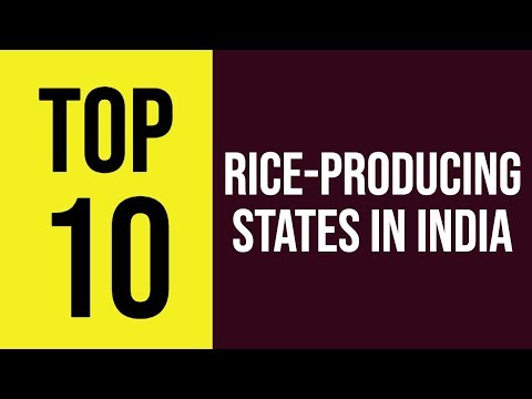 Top 10 Rice-producing States In India || Interesting Facts