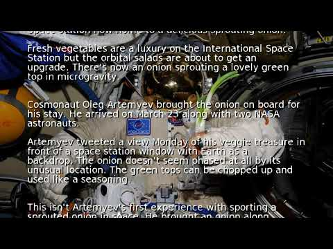 Space station now home to a delicious sprouting onion