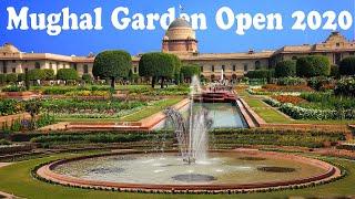 Mughal Garden Delhi 2020   Rashtrapati Bhavan Museum Ticket Price   Hindi   Ghumakkad Boy