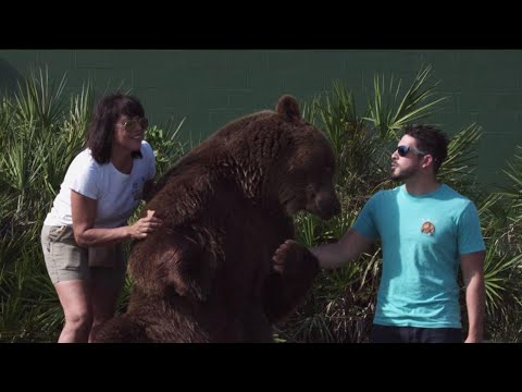 Meet the Mother and Son Who Live with 14 Bears