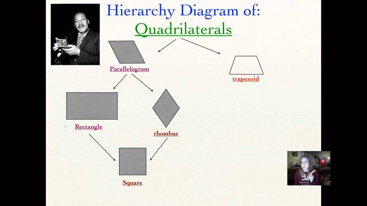 Lesson 85, QuadrilateralsHierarchy Diagrams  YouTube