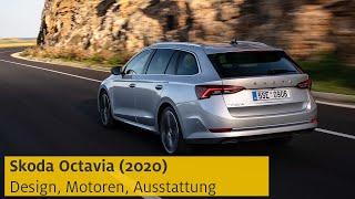Škoda Octavia (2020): Daten, Motoren, Preis | ADAC