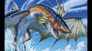 本期為大家介紹水龍與其特殊個體們的生態習性.