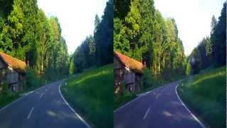 3D bavarian forest in germany 2012