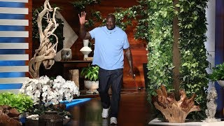 Shaq\'s Babysitting Gig Led to His Google Riches