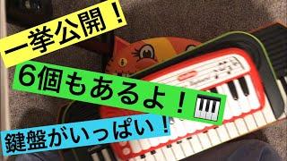 これ以外にもフル鍵盤のCASIO電子ピアノもありました!またの機会に紹介します! SA46→https://amzn.to/2P83ccI SA76 → https://amzn.to/2DcRlYj CT-X3000→ ...
