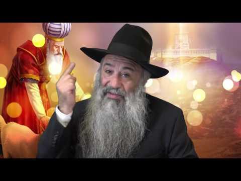 N'°224 Aharei Mot - Kedochim | Même si tu atteint le plus grand niveau du service divin ,respecte.