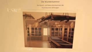 Simple History - Die Wunderkammer der Franckeschen Stiftungen