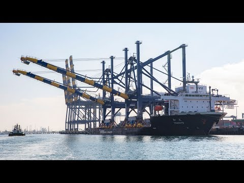 YTI Cranes Arrive at the Port of Los Angeles