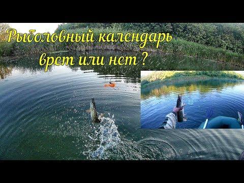 Щука в августе.Проверяем рыболовный календарь